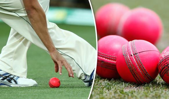 BCCI Requests For Specific Pink Balls Before The Day-Night Test