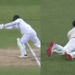 Steve Smith Pulls Off An Impressive Catch In The Adelaide Test
